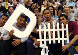 D Fence