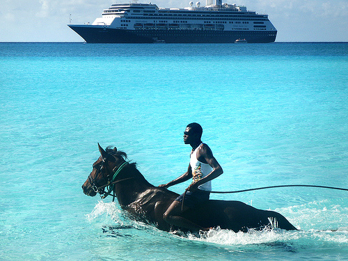 http://wayneandwax.com/wp/images/cruise-horse.jpg